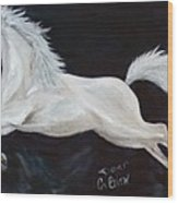 Lipizzaner Capriole Wood Print