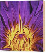 Liqufied Water Lily Wood Print