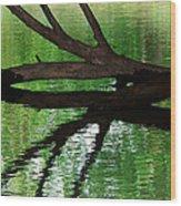 Liquid Reflection Wood Print