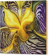 Liquified Orchid Wood Print