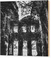 Lisheen House Wood Print