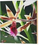 Lit Up Orchid Wood Print