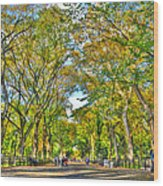 Literary Walk In Central Park Wood Print