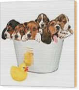 Litter Of Puppies In A Bathtub Wood Print