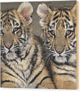 Little Angels Bengal Tigers Endangered Wildlife Rescue Wood Print