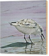 Little Bird On The Beach Wood Print