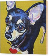 Little Bitty Chihuahua Wood Print