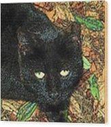 Little Black Cat In Fall Wood Print