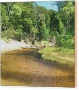 Little Black Creek - Hoffmaster State Park Wood Print
