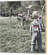 Little Boy On Farm Wood Print