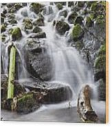 Little Cascade In Marlay Park Dublin Wood Print
