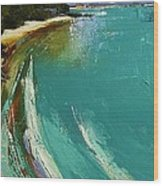 Little Cove Noosa Heads Abstract Palette Knife Seascape Painting Wood Print