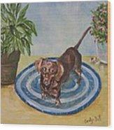 Little Dachshund Puppy Wood Print