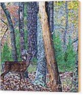 Little Deer In Autumn Wood Print