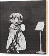 Little Fiddler Wood Print