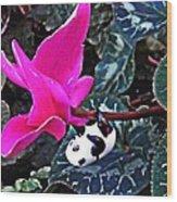 Little Glass Pandas 78 Wood Print