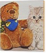 little Kitten with her Teddybear Wood Print