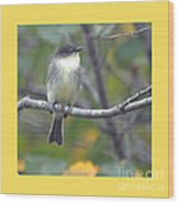 Little Lady Eastern Kingbird 4 Wood Print