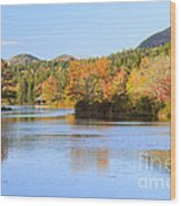 Little Long Pond And Bubbles Mount Desert Island Maine Wood Print