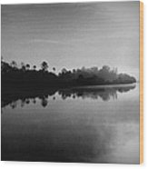 Little Manatee River Number 2 Wood Print