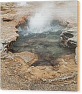 Little Pool Geyser At Black Sands Geyser Basin Wood Print