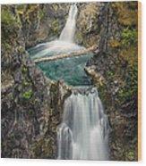 Little Qualicum Falls Wood Print