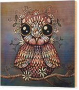 Little Rainbow Flower Owl Wood Print