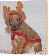 Little Reindeer Wood Print