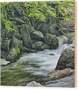 Little River Scenery E226 Wood Print