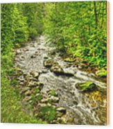 Little River - Smoky Mountains Wood Print