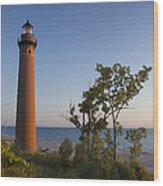 Little Sable Lighthouse By The Shore Wood Print