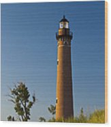 Little Sable Lighthouse On The Dune By Silver Lake Michigan No.560 Wood Print