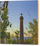 Little Sable Lighthouse Seen Through The Trees Wood Print
