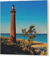 Little Sable Point Wood Print