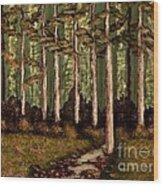 Little Stream In The Deep Woods II Wood Print
