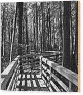 Little Turkey Island Trail I Wood Print