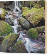 Little Waterfall In Marlay Park Wood Print