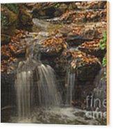 Little Waterfall in the Japanese Garden Wood Print