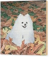 Little White Dog Watercolor Portrait Wood Print