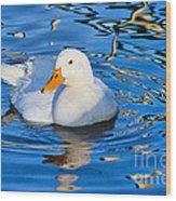 Little White Duck Wood Print