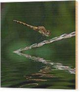 Little Yeller 2 Wood Print