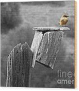 Little Yellow Bird Wood Print