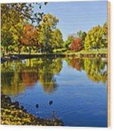 Littleton Pond 1 Wood Print
