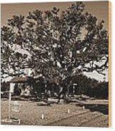 Live Oak Outer Banks Wood Print