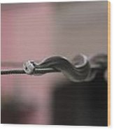 Live Wire - Rat Snake On Electric Wire Wood Print