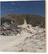 Lively Dunes Wood Print