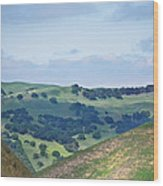 Livermore Hills Wood Print