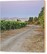 Livermore Vineyard 3 Wood Print