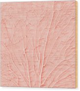 Living Coral Color Of The Year 2019 Wood Print