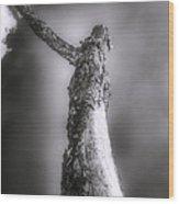 Living Dead Tree - Spooky - Eerie Wood Print